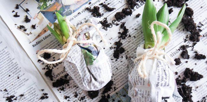 DIY Hippe bloembollen - Live love interior