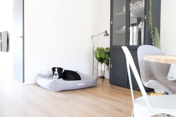 Webshoptip-The-Pet-Empire---Live-love-interior